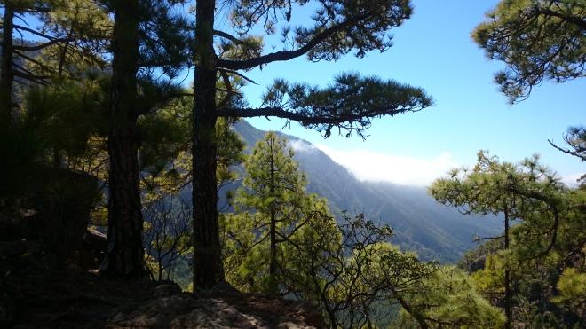 Caldera de Taburiente_unterhalb Pico Bejenado gesehen