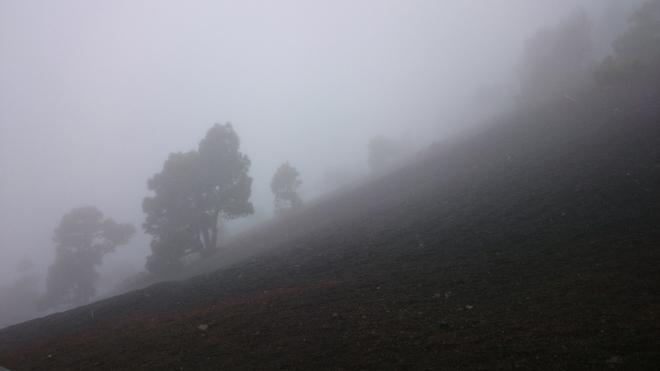 Vulkan im Nebel_oberhalb El Teime