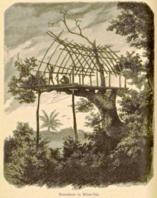 milne-bay-papua-new-guinea_1884
